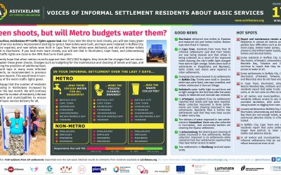 Green shoots, but will Metro budgets water them?