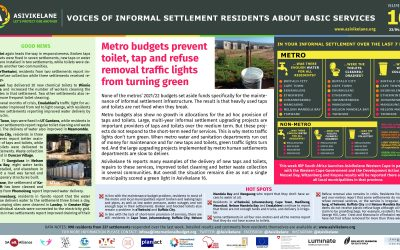 Metro budgets prevent toilet, tap and refuse removal traffic lights from turning green